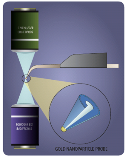 Tip Enhanced Raman Spectroscopy Diagram