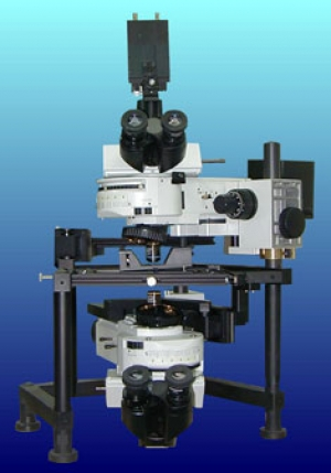 Dual (upright/inverted) Microscope