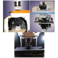 Confocal AFM Raman TERS and NSOM System