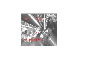 Nanonics customer profiled by SPIE for using a Nanonics AFM-SEM for optical transport work