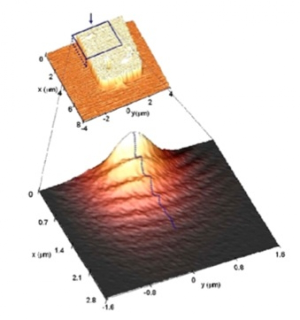 Surface Plasmons Near field Excitation and Collection