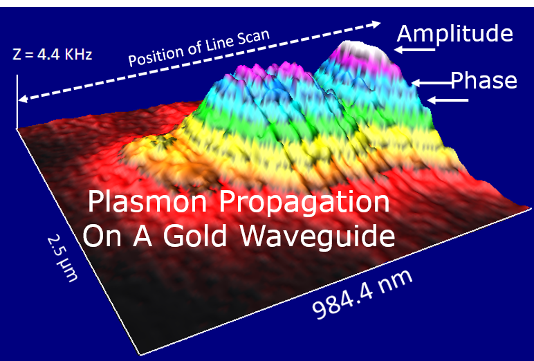 Plasmonic Transport